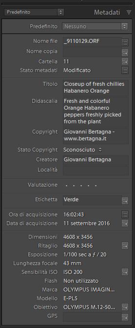 Schermata di Adobe Lightroom per l'inserimento dei metadati
