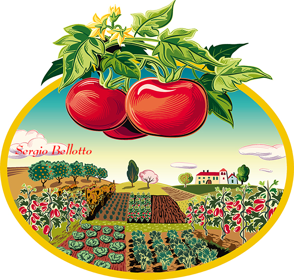 Illustrazione di un paesaggio con pomodori creata dall'illustratore Sergio Bellotto