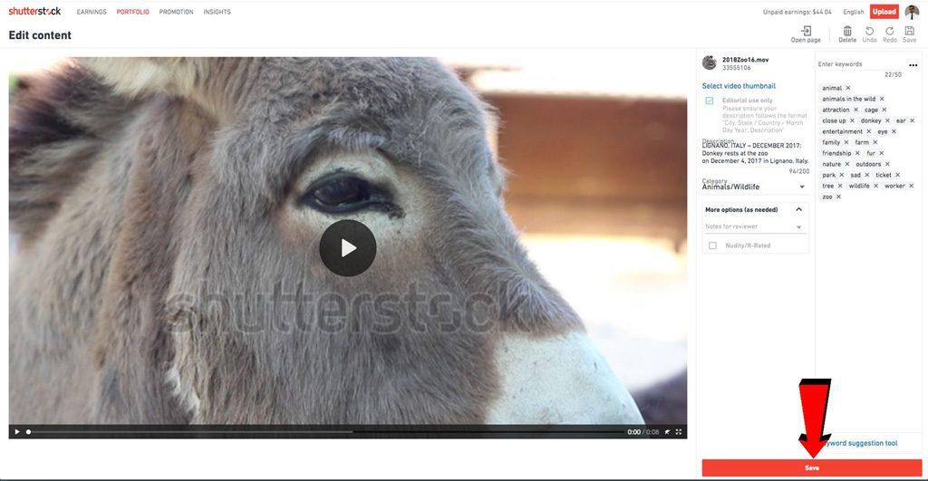 Screenshot di una scheda dello stock footage su Shutterstock