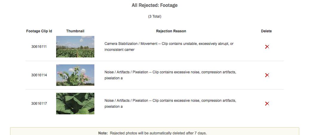 Risultati delle selezioni di stock footage inviato a Shutterstock