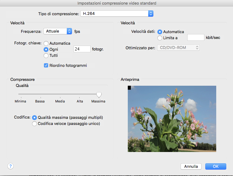 Screenshot delle opzioni di esportazione di iMovie