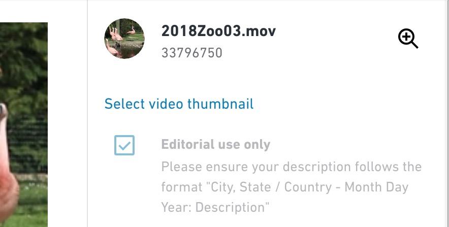 Selezione di un contenuto caricato come editoriale su Shutterstock